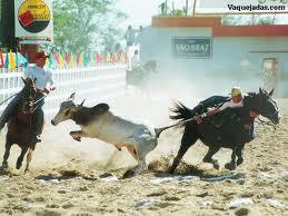 http://cratonoticias.files.wordpress.com/2012/04/201204171538223.jpg